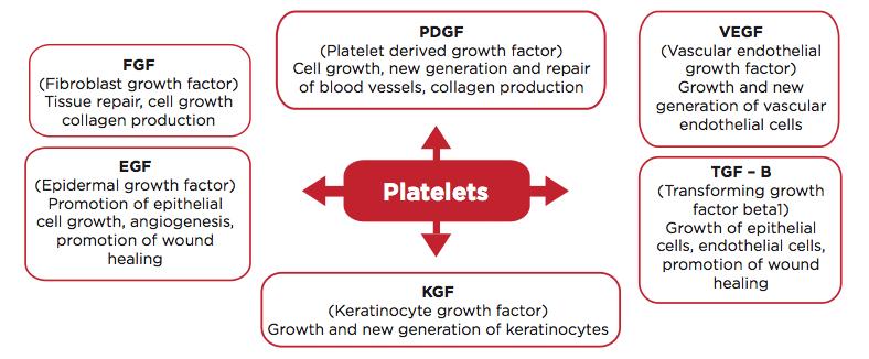 PRP Growth Factors
